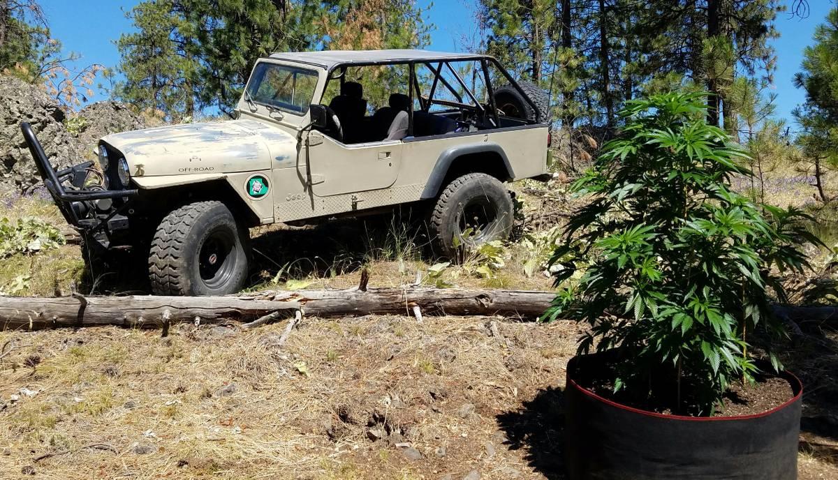 1983 Jeep Scrambler CJ8 350 Auto For Sale Spokane, WA ...