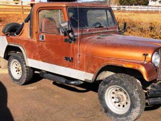 1981 shingle springs ca